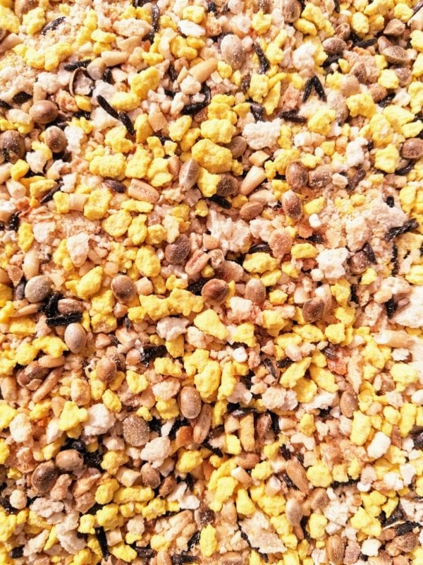 Mix of dry egg food suitable for birds during breeding season