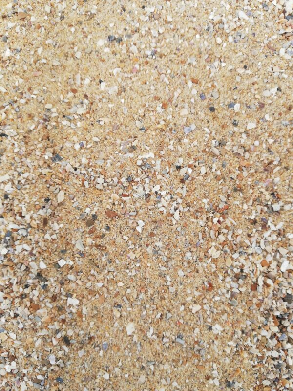 BROWN SAND WITH SHELLS