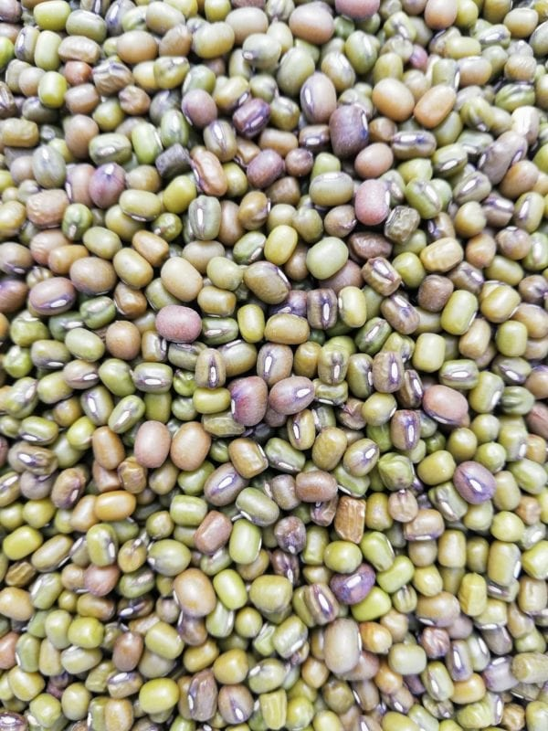 Mung Beans especially for Birds