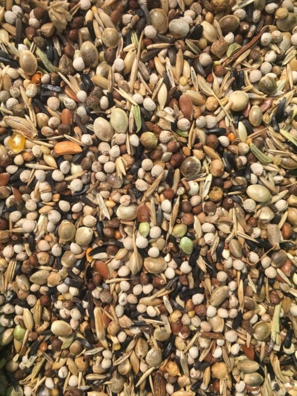 A mix of bird seed that is suitable for Goldfinches