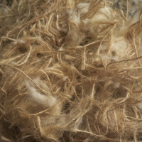 Sisal - Ideal for Canaries