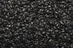 Small Black Sunflower Seeds