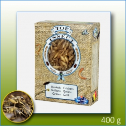 TOP INSECT FROZEN CRICKETS