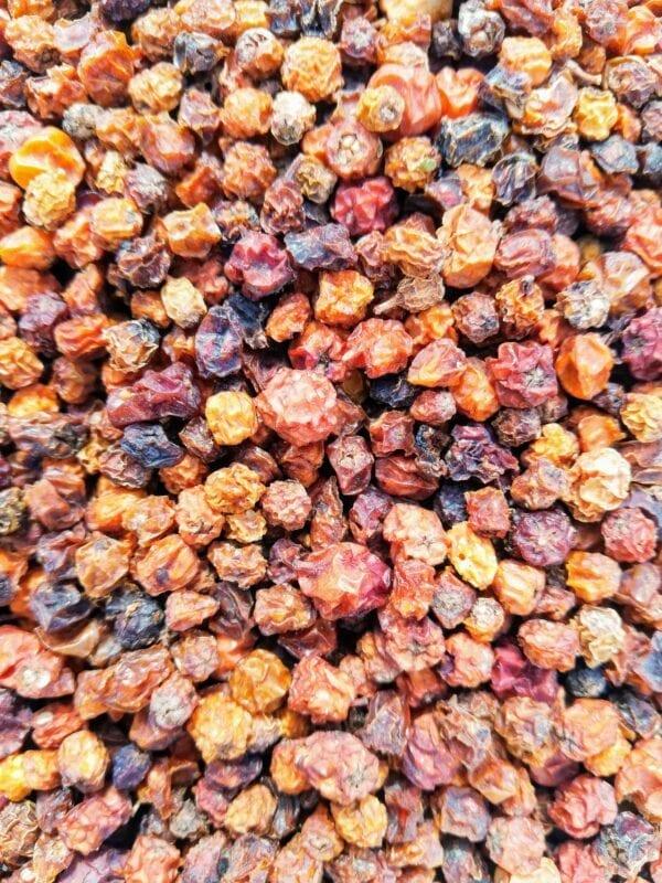 Rowan Berries for Birds